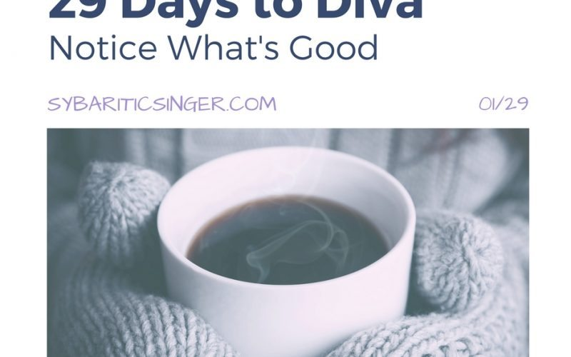 29 Days to Diva | Day 1 | The Sybaritic Singer | sybariticsinger.com